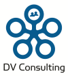 DV Consulting